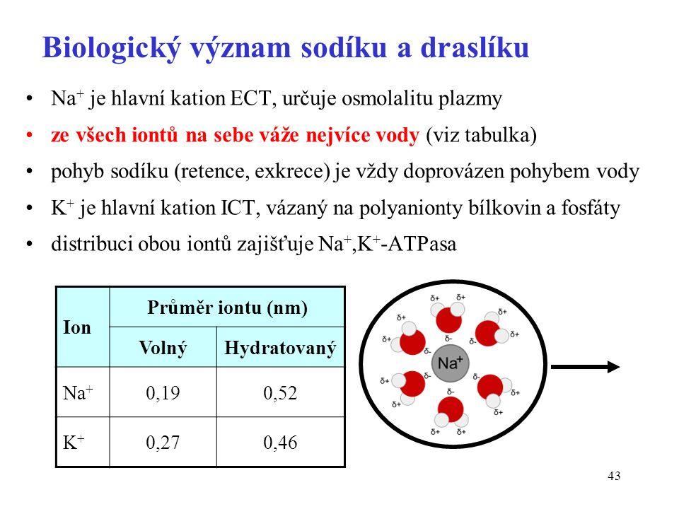 43 Biologický význam sodíku a draslíku Na + je hlavní kation ECT, určuje osmolalitu plazmy ze všech iontů na sebe váže nejvíce vody (viz tabulka) pohyb sodíku (retence, exkrece) je vždy doprovázen pohybem vody K + je hlavní kation ICT, vázaný na polyanionty bílkovin a fosfáty distribuci obou iontů zajišťuje Na +,K + -ATPasa Ion Průměr iontu (nm) VolnýHydratovaný Na + 0,190,52 K+K+ 0,270,46