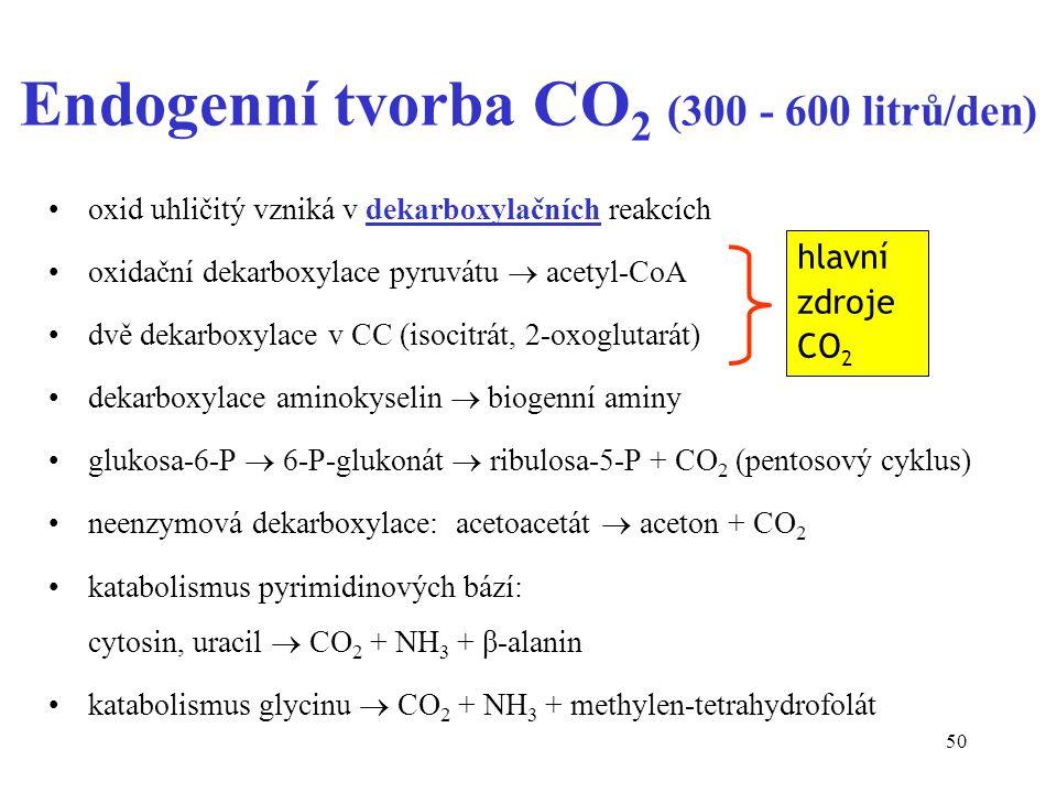 50 Endogenní tvorba CO 2 (300 - 600 litrů/den) oxid uhličitý vzniká v dekarboxylačních reakcích oxidační dekarboxylace pyruvátu  acetyl-CoA dvě dekar