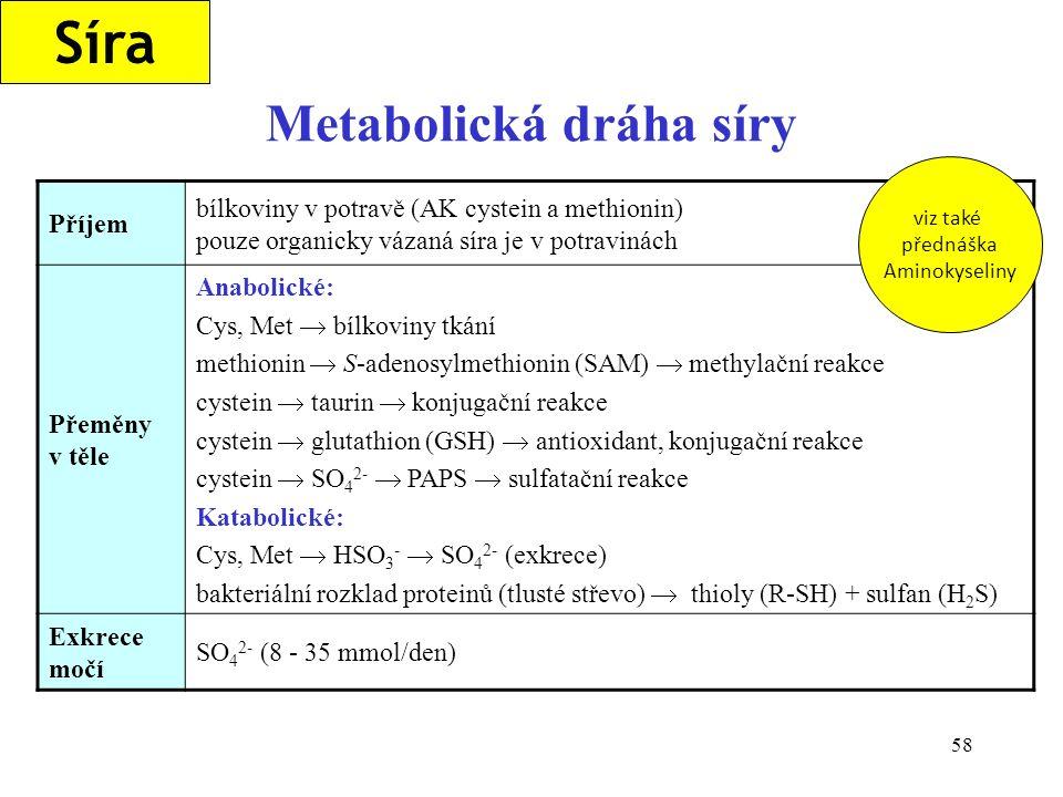 58 Metabolická dráha síry Síra Příjem bílkoviny v potravě (AK cystein a methionin) pouze organicky vázaná síra je v potravinách Přeměny v těle Anaboli