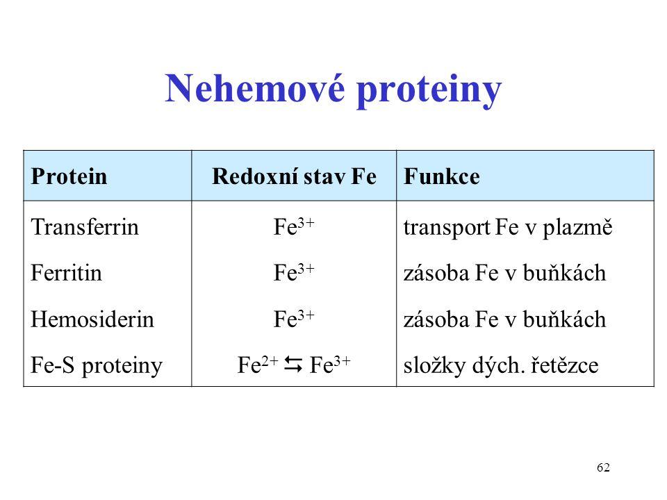 62 Nehemové proteiny ProteinRedoxní stav FeFunkce Transferrin Ferritin Hemosiderin Fe-S proteiny Fe 3+ Fe 2+  Fe 3+ transport Fe v plazmě zásoba Fe v buňkách složky dých.