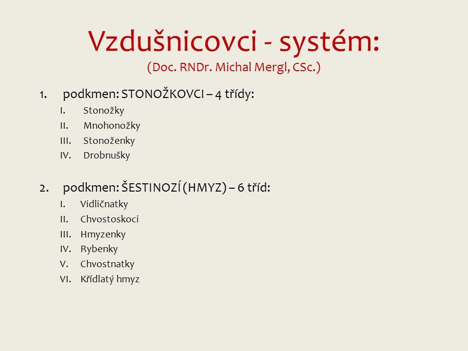 Vzdušnicovci - systém: (Doc.RNDr.