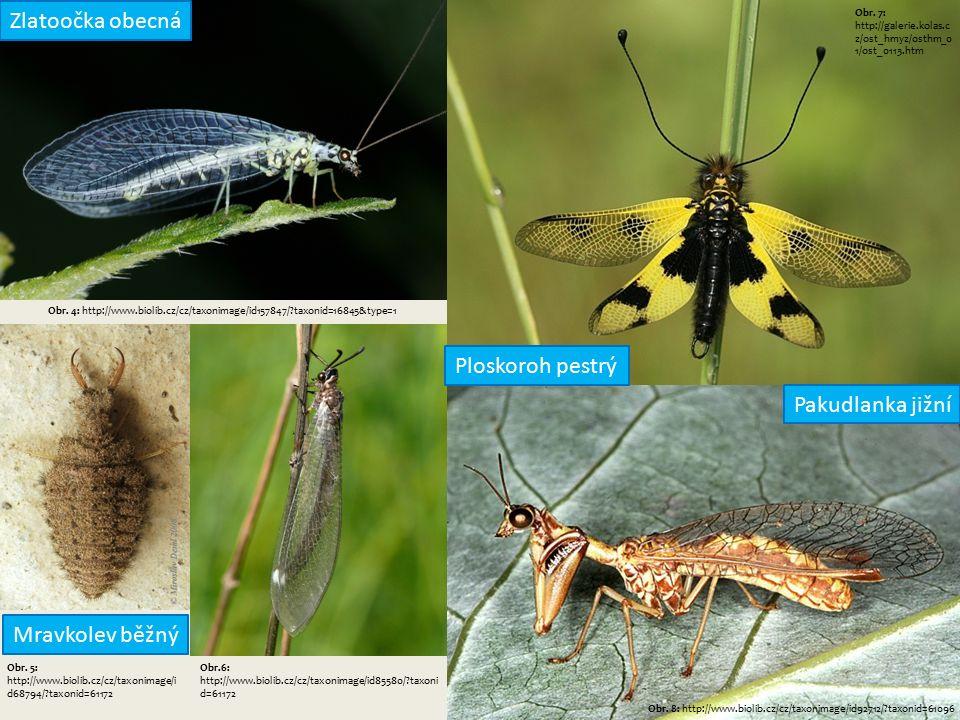 Obr. 4: http://www.biolib.cz/cz/taxonimage/id157847/ taxonid=16845&type=1 Obr.