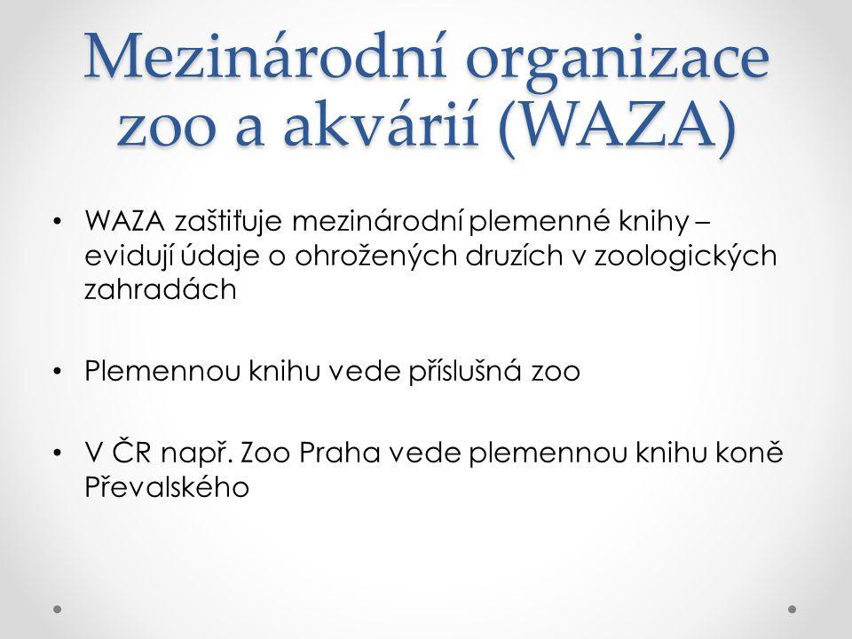 Mezinárodní organizace zoo a akvárií (WAZA) WAZA zaštiťuje mezinárodní plemenné knihy – evidují údaje o ohrožených druzích v zoologických zahradách Plemennou knihu vede příslušná zoo V ČR např.