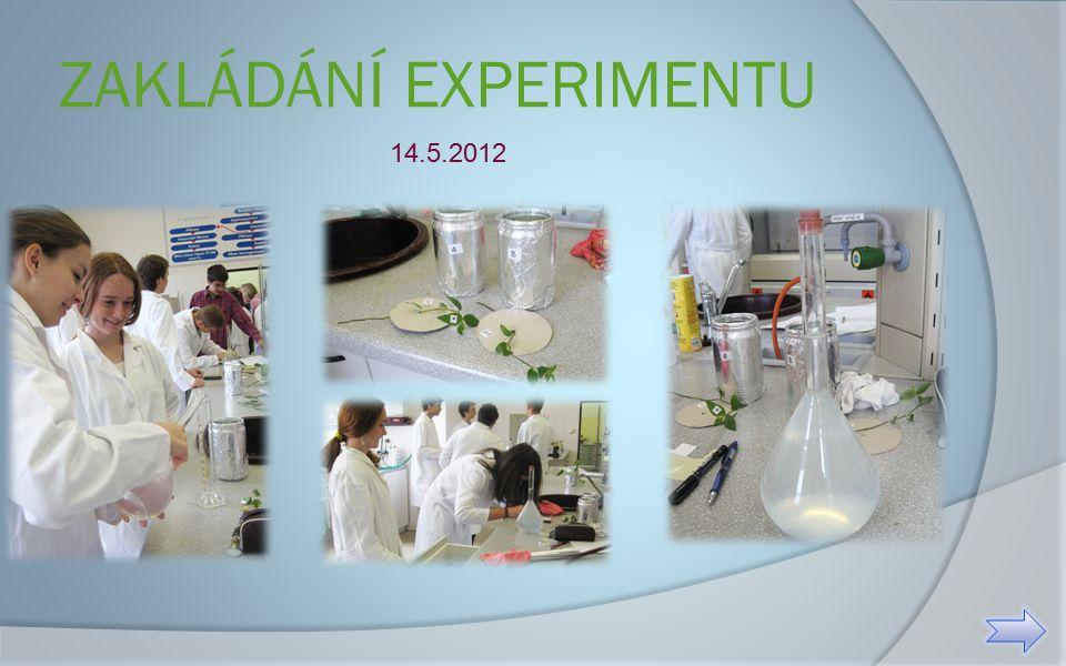 ZAKLÁDÁNÍ EXPERIMENTU 14.5.2012
