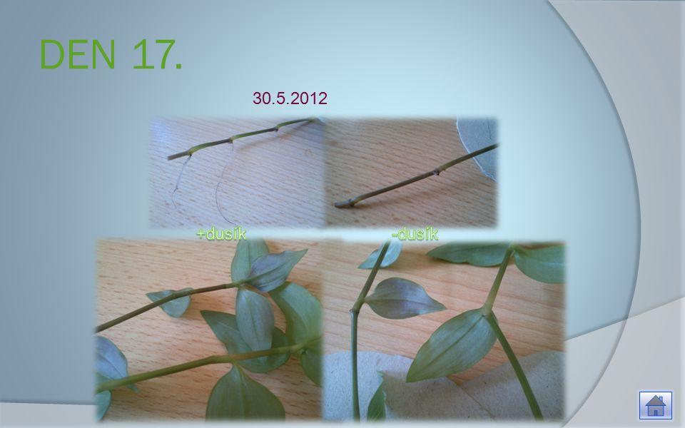 DEN 17. 30.5.2012