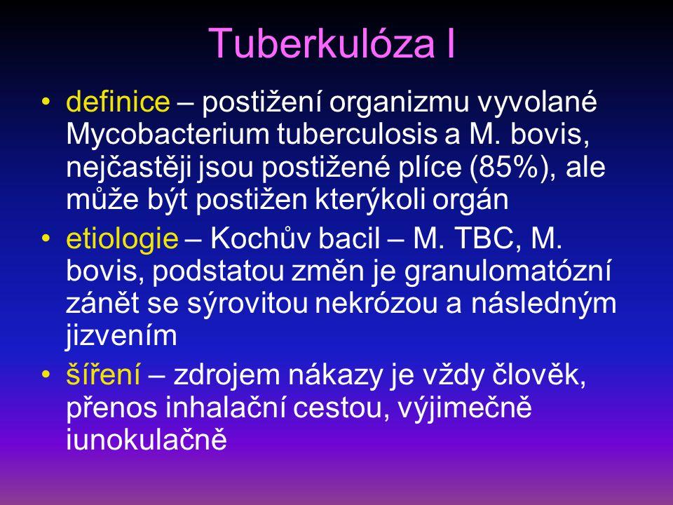 Tuberkulóza I definice – postižení organizmu vyvolané Mycobacterium tuberculosis a M.