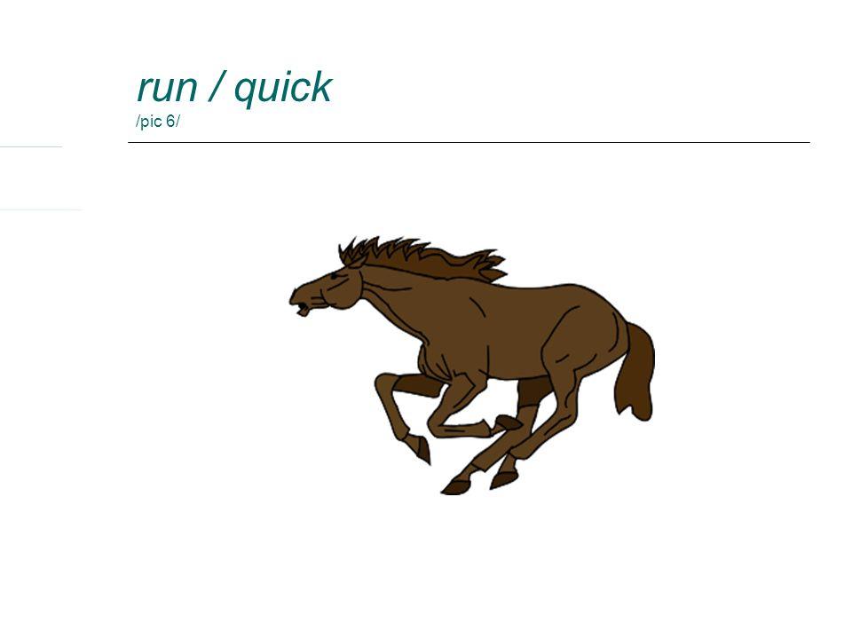 run / quick /pic 6/