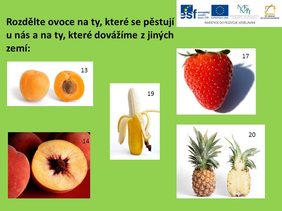 Rozdělte ovoce na ty, které se pěstují u nás a na ty, které dovážíme z jiných zemí: 13 14 17 19 20