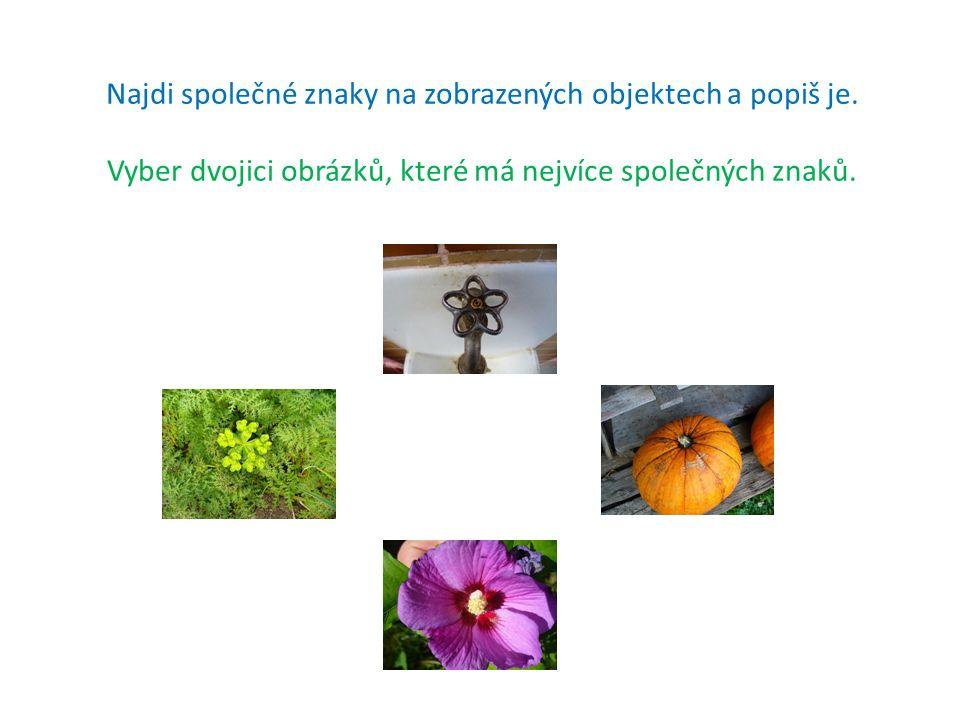 Najdi společné znaky na zobrazených objektech a popiš je. Vyber dvojici obrázků, které má nejvíce společných znaků.