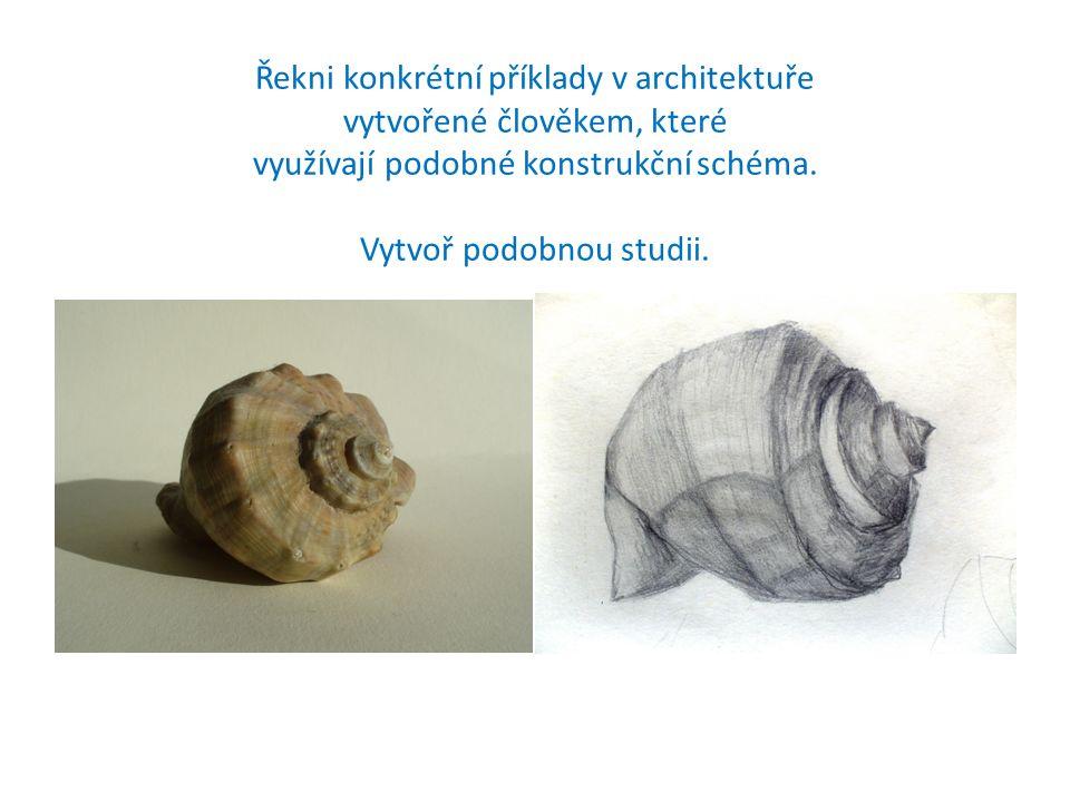 Řekni konkrétní příklady v architektuře vytvořené člověkem, které využívají podobné konstrukční schéma. Vytvoř podobnou studii.