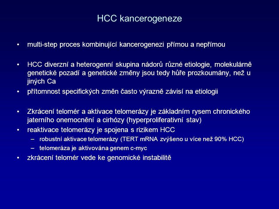 HCC kancerogeneze multi-step proces kombinující kancerogenezi přímou a nepřímou HCC diverzní a heterogenní skupina nádorů různé etiologie, molekulárně genetické pozadí a genetické změny jsou tedy hůře prozkoumány, než u jiných Ca přítomnost specifických změn často výrazně závisí na etiologii Zkrácení telomér a aktivace telomerázy je základním rysem chronického jaterního onemocnění a cirhózy (hyperproliferativní stav) reaktivace telomerázy je spojena s rizikem HCC –robustní aktivace telomerázy (TERT mRNA zvýšeno u více než 90% HCC) –telomeráza je aktivována genem c-myc zkrácení telomér vede ke genomické instabilitě