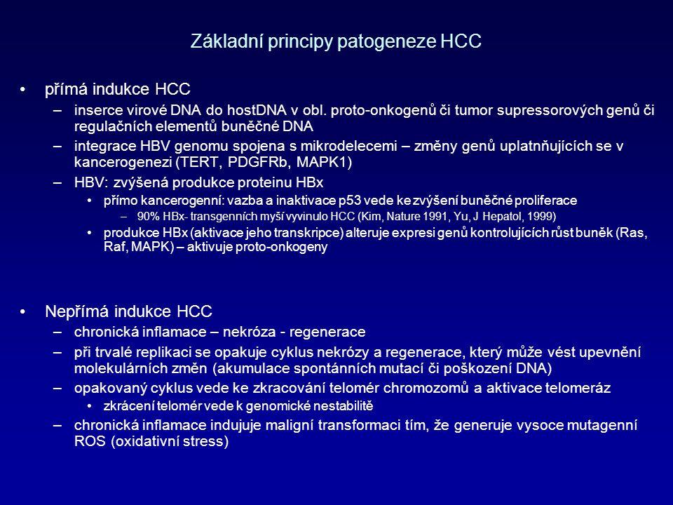 Základní principy patogeneze HCC přímá indukce HCC –inserce virové DNA do hostDNA v obl.