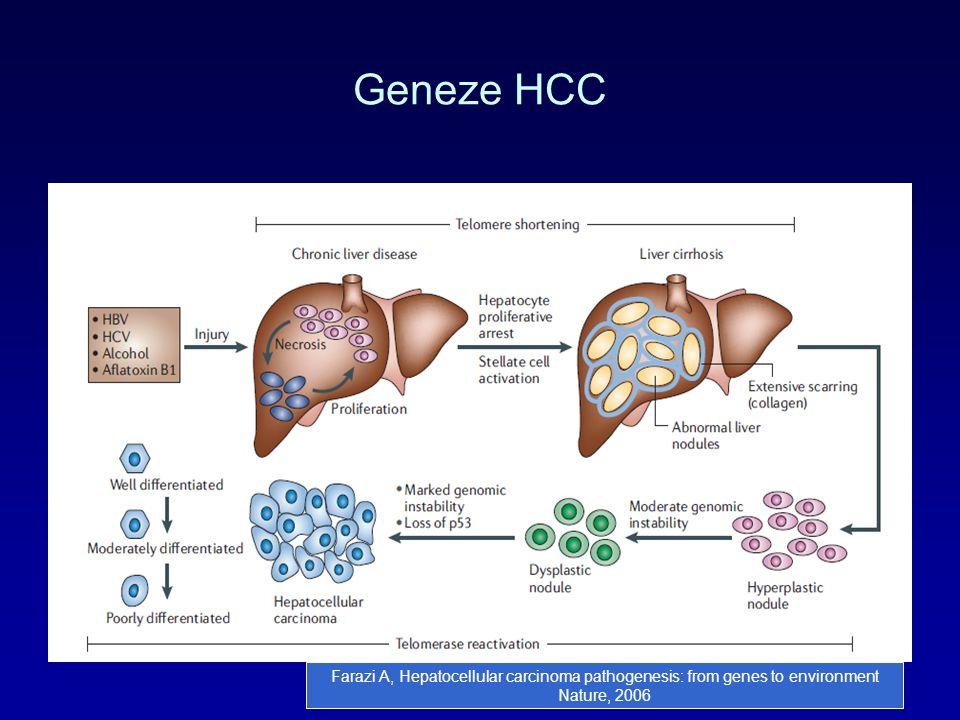 Geneze HCC Farazi A, Hepatocellular carcinoma pathogenesis: from genes to environment Nature, 2006