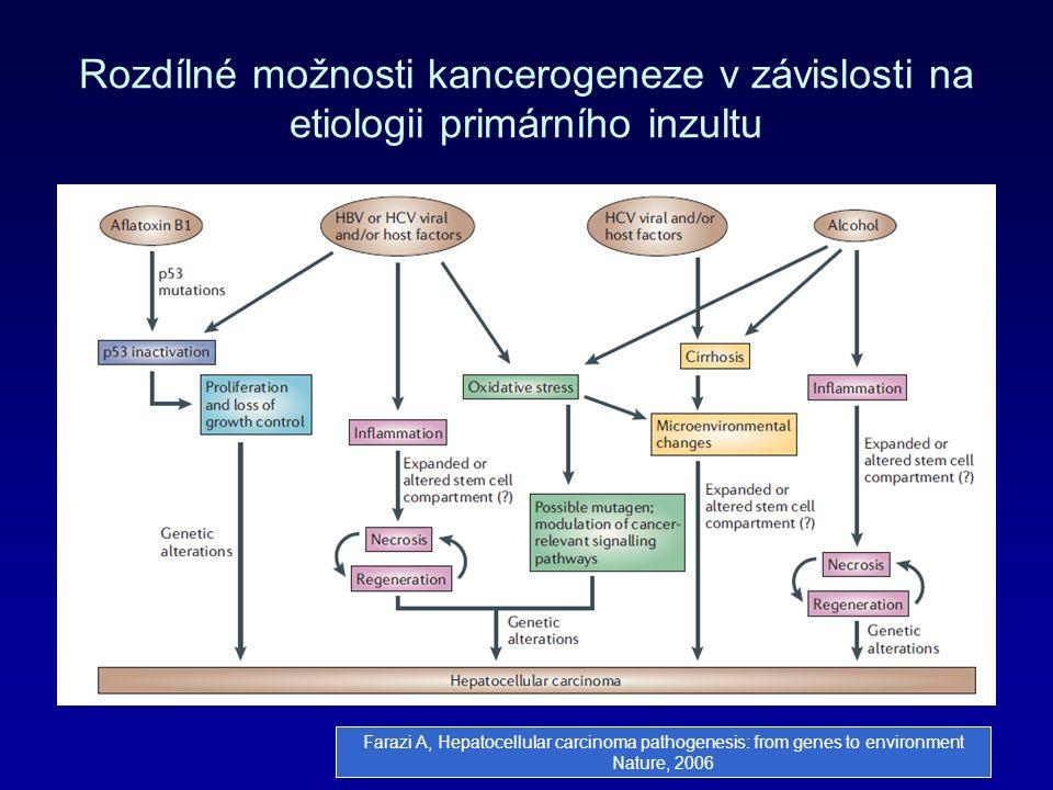 Rozdílné možnosti kancerogeneze v závislosti na etiologii primárního inzultu Farazi A, Hepatocellular carcinoma pathogenesis: from genes to environment Nature, 2006