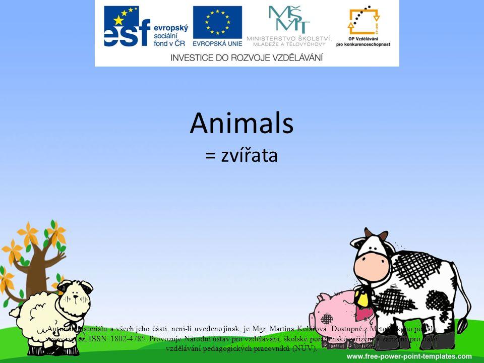 Animals = zvířata Autorem materiálu a všech jeho částí, není-li uvedeno jinak, je Mgr.