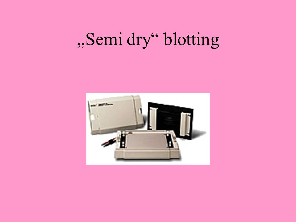"""Semi dry"" blotting"