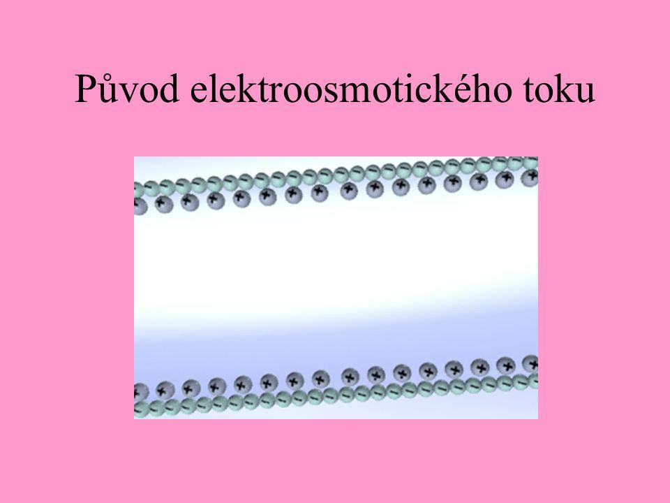 Původ elektroosmotického toku