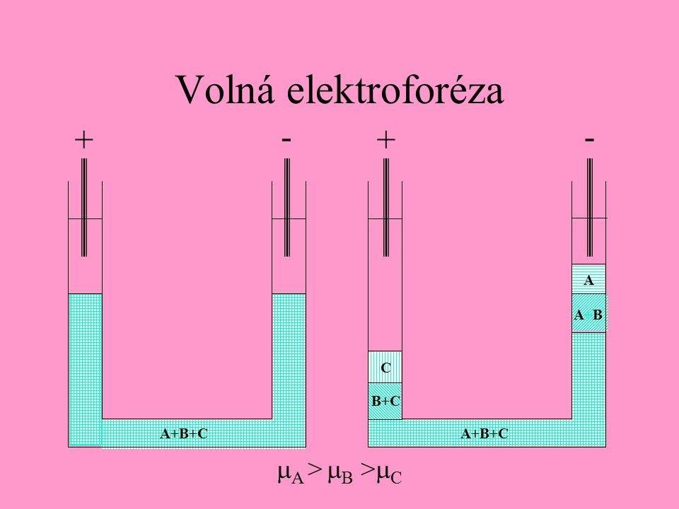 Volná elektroforéza ++ -- C B+C A+B+C A A+BA+B  A >  B >  C