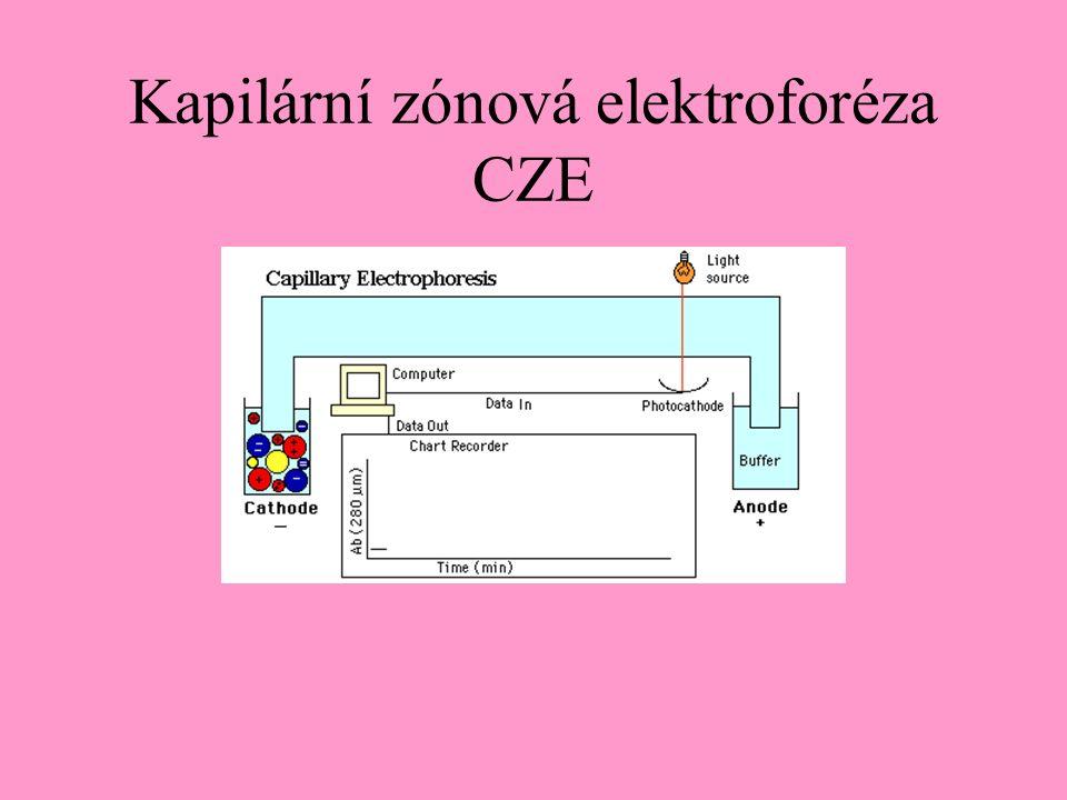 Kapilární zónová elektroforéza CZE