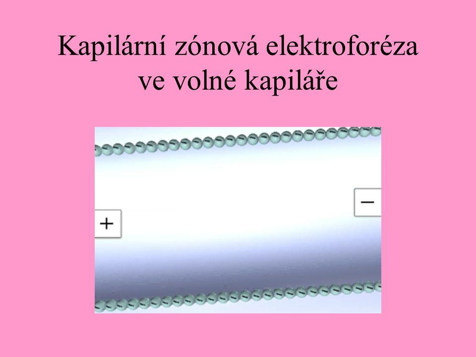 Kapilární zónová elektroforéza ve volné kapiláře