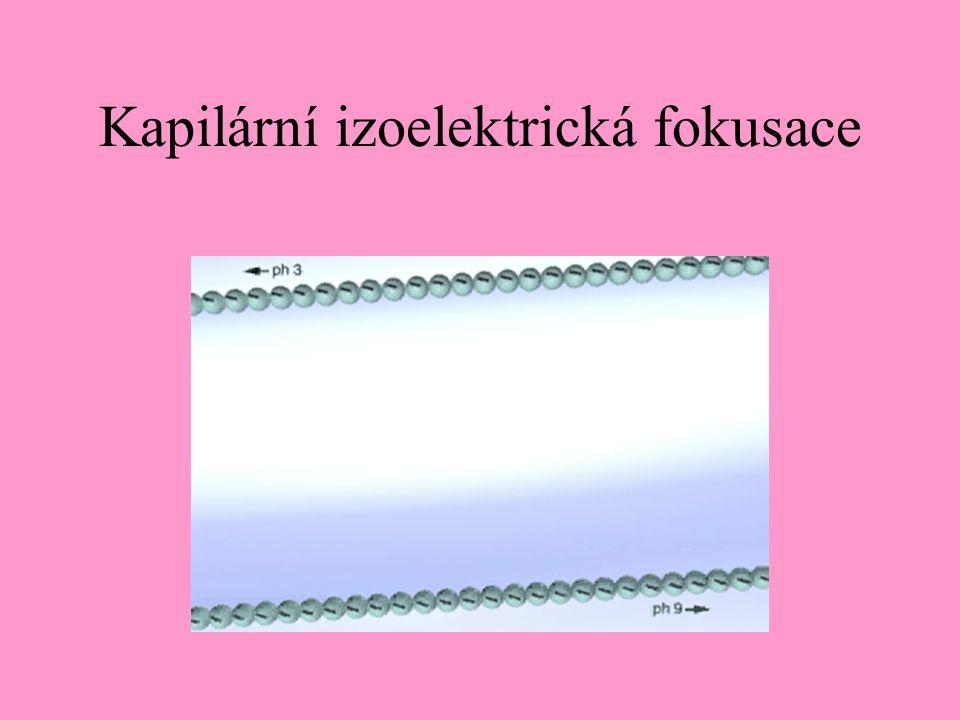 Kapilární izoelektrická fokusace