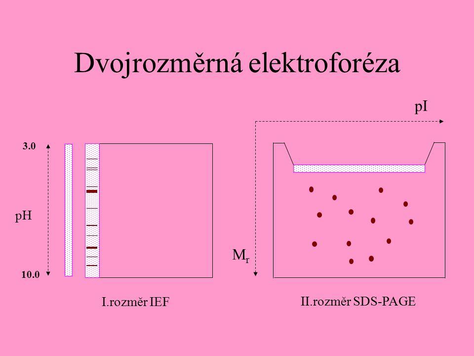 Dvojrozměrná elektroforéza pI MrMr I.rozměr IEF II.rozměr SDS-PAGE pH 3.0 10.0