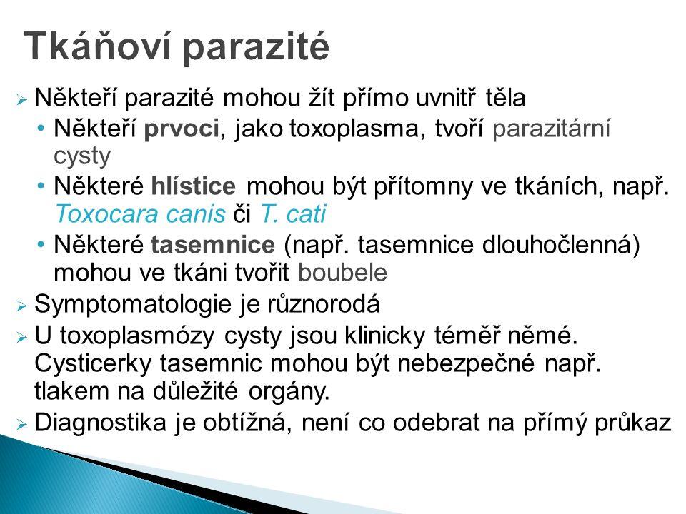 Někteří parazité mohou žít přímo uvnitř těla Někteří prvoci, jako toxoplasma, tvoří parazitární cysty Některé hlístice mohou být přítomny ve tkáních, např.