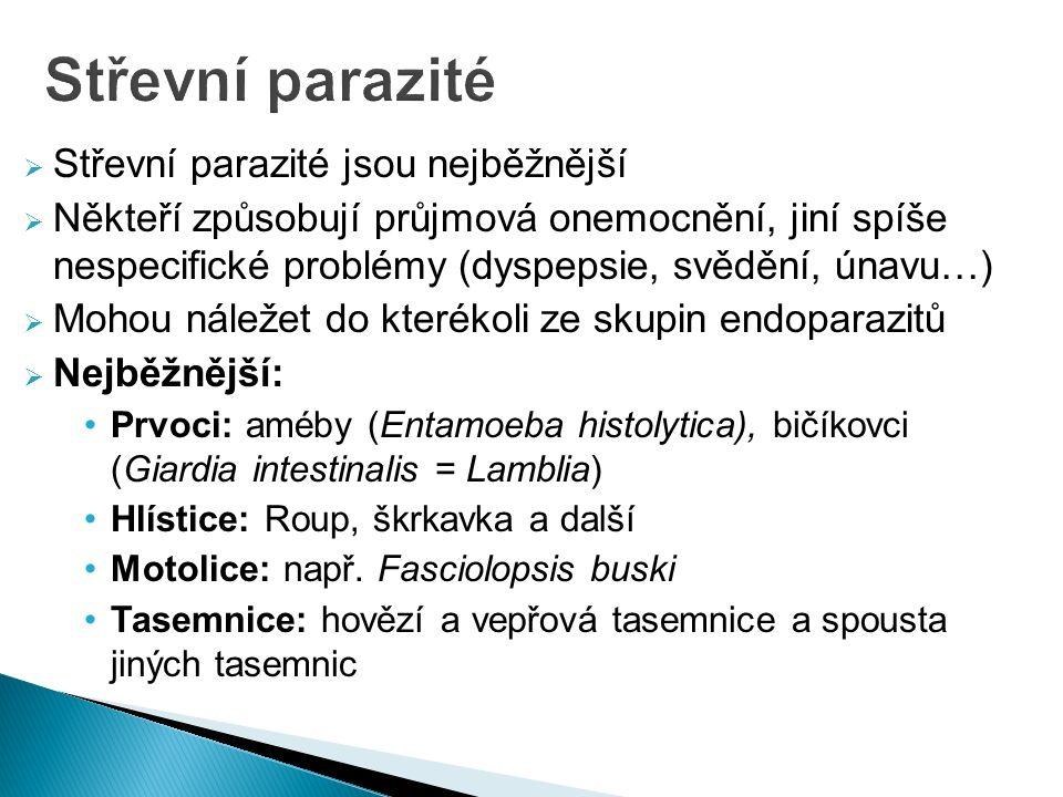  Střevní parazité jsou nejběžnější  Někteří způsobují průjmová onemocnění, jiní spíše nespecifické problémy (dyspepsie, svědění, únavu…)  Mohou náležet do kterékoli ze skupin endoparazitů  Nejběžnější: Prvoci: améby (Entamoeba histolytica), bičíkovci (Giardia intestinalis = Lamblia) Hlístice: Roup, škrkavka a další Motolice: např.