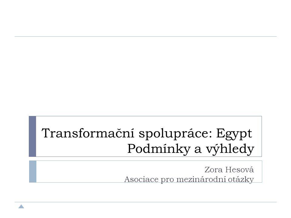 Transformační spolupráce: Egypt Podmínky a výhledy Zora Hesová Asociace pro mezinárodní otázky