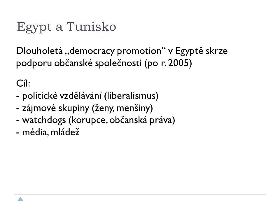 """Egypt a Tunisko Dlouholetá """"democracy promotion v Egyptě skrze podporu občanské společnosti (po r."""