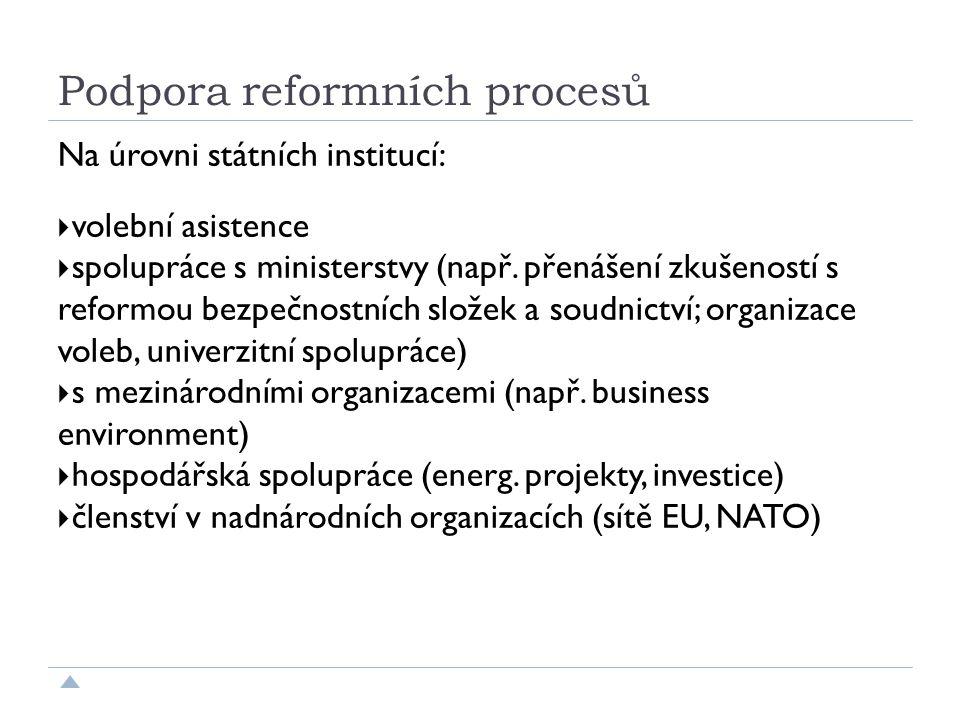 Podpora reformních procesů Na úrovni státních institucí:  volební asistence  spolupráce s ministerstvy (např.
