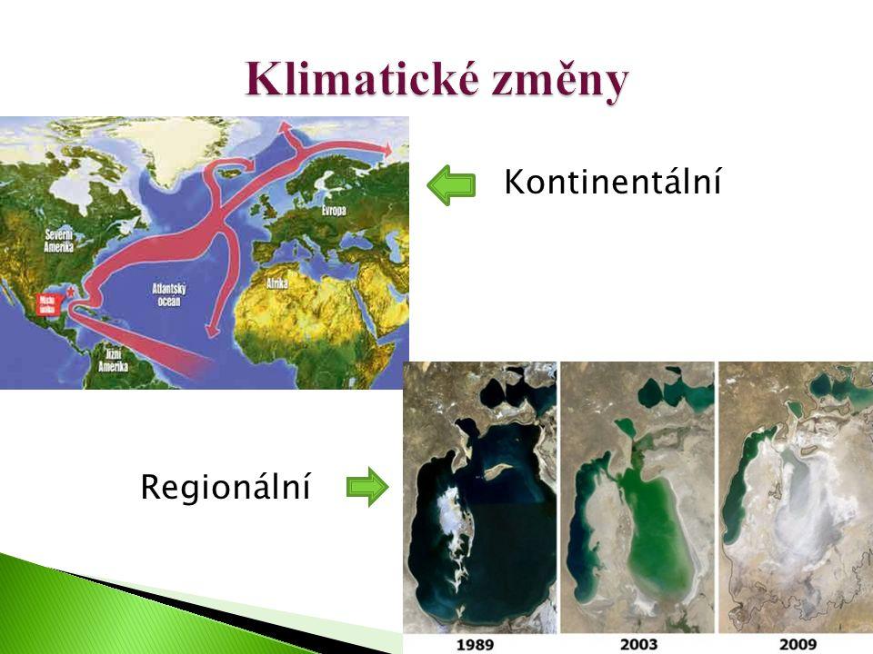 Kontinentální Regionální