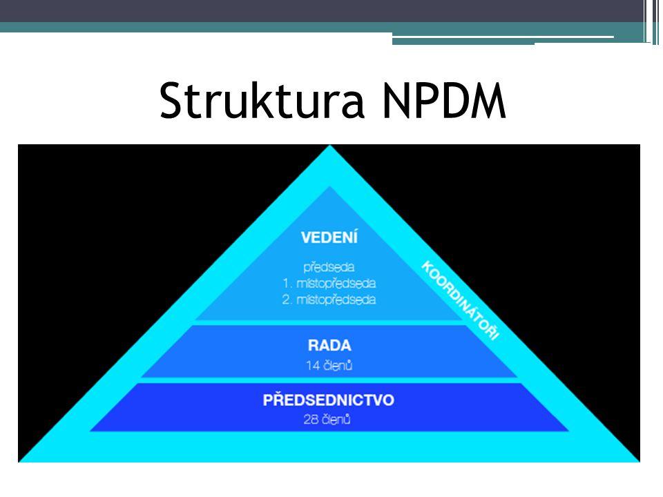 Struktura NPDM