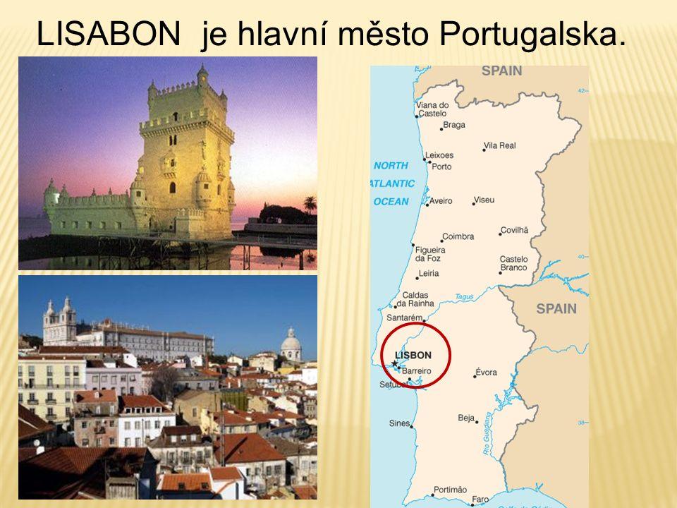 Předkové dnešních Portugalců byli velmi dobří mořeplavci první obepluli Afriku podnikli první cestu kolem světa V hospodářství převažuje rybolov a zemědělství.