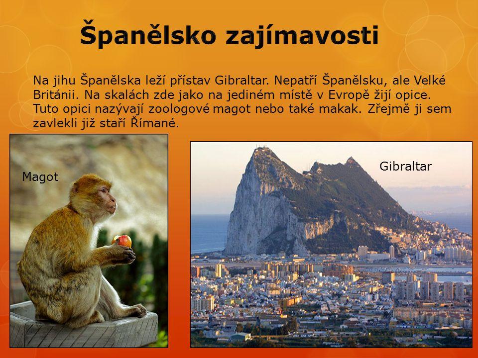 Na jihu Španělska leží přístav Gibraltar. Nepatří Španělsku, ale Velké Británii.