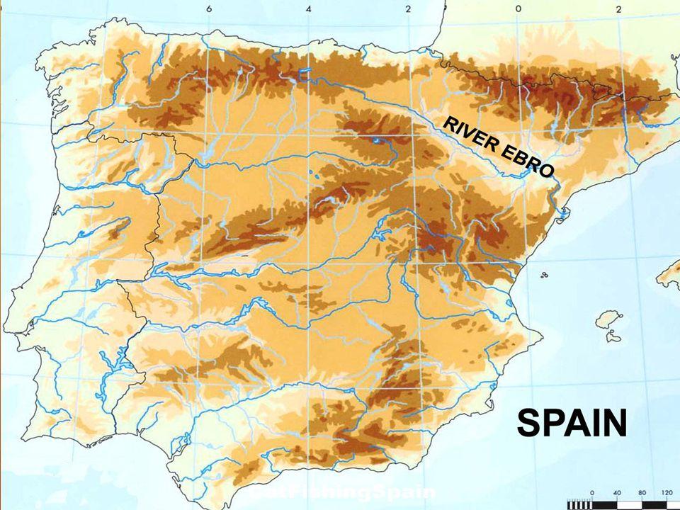 Nejdelší řekou na Pyrenejské poloostrově je řeka Tajo.