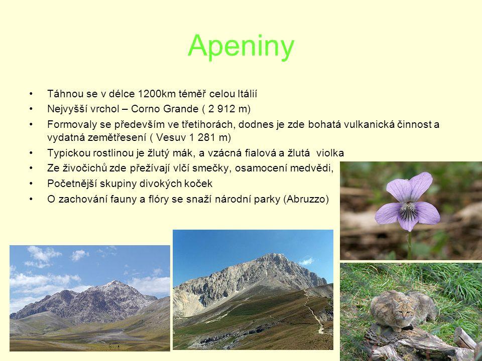 Apeniny Táhnou se v délce 1200km téměř celou Itálií Nejvyšší vrchol – Corno Grande ( 2 912 m) Formovaly se především ve třetihorách, dodnes je zde bohatá vulkanická činnost a vydatná zemětřesení ( Vesuv 1 281 m) Typickou rostlinou je žlutý mák, a vzácná fialová a žlutá violka Ze živočichů zde přežívají vlčí smečky, osamocení medvědi, Početnější skupiny divokých koček O zachování fauny a flóry se snaží národní parky (Abruzzo)