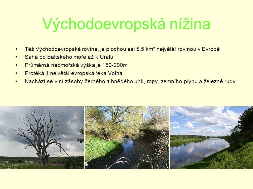 Východoevropská nížina Též Východoevropská rovina, je plochou asi 5,5 km² největší rovinou v Evropě Sahá od Baltského moře až k Uralu Průměrná nadmořská výška je 150-200m Protéká jí největší evropská řeka Volha Nachází se v ní zásoby černého a hnědého uhlí, ropy, zemního plynu a železné rudy