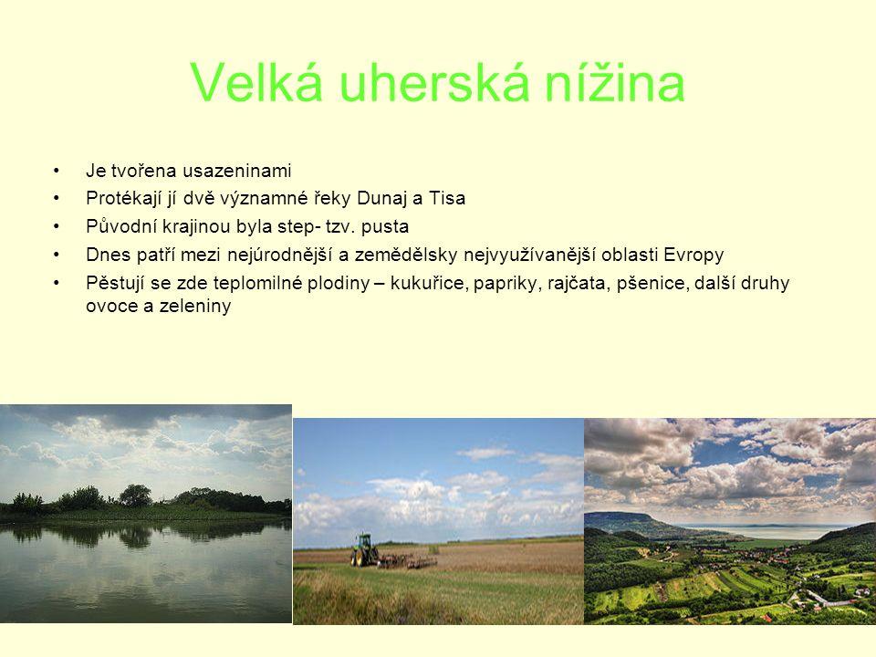 Velká uherská nížina Je tvořena usazeninami Protékají jí dvě významné řeky Dunaj a Tisa Původní krajinou byla step- tzv.