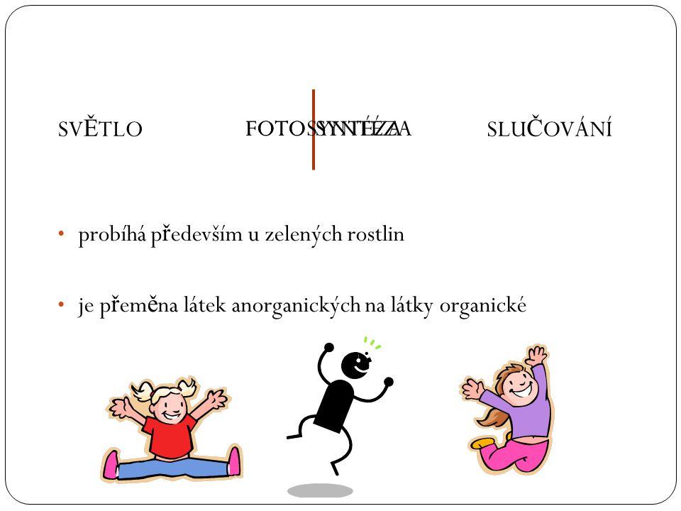 probíhá p ř edevším u zelených rostlin je p ř em ě na látek anorganických na látky organické SV Ě TLOSLU Č OVÁNÍFOTOSYNTÉZAFOTOSYNTÉZA