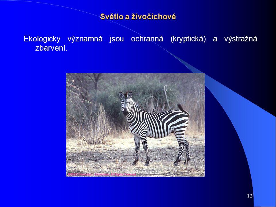 12 Světlo a živočichové Ekologicky významná jsou ochranná (kryptická) a výstražná zbarvení.