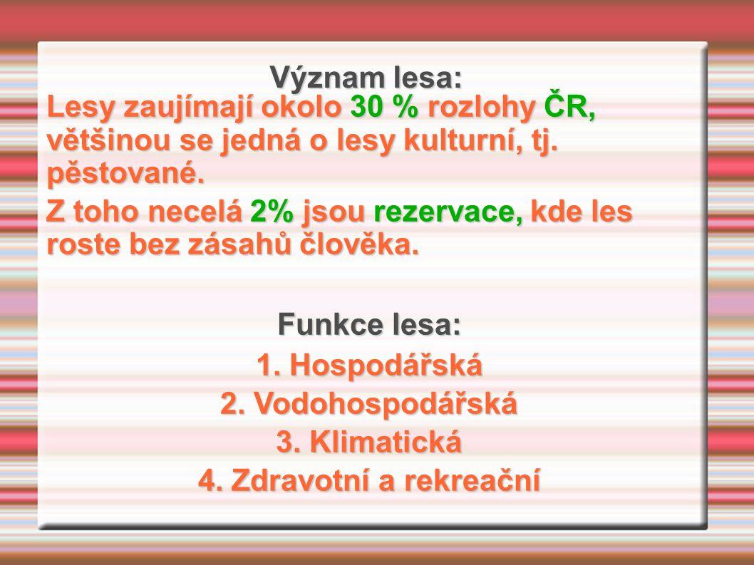Význam lesa: Lesy zaujímají okolo 30 % rozlohy ČR, většinou se jedná o lesy kulturní, tj.