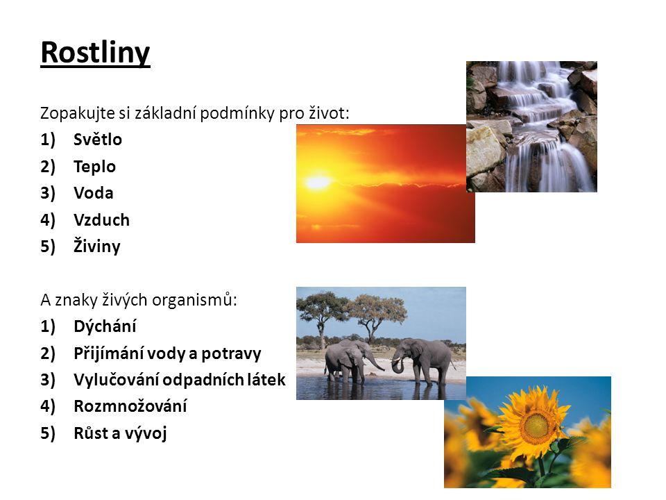 Rostliny Zopakujte si základní podmínky pro život: 1)Světlo 2)Teplo 3)Voda 4)Vzduch 5)Živiny A znaky živých organismů: 1)Dýchání 2)Přijímání vody a potravy 3)Vylučování odpadních látek 4)Rozmnožování 5)Růst a vývoj