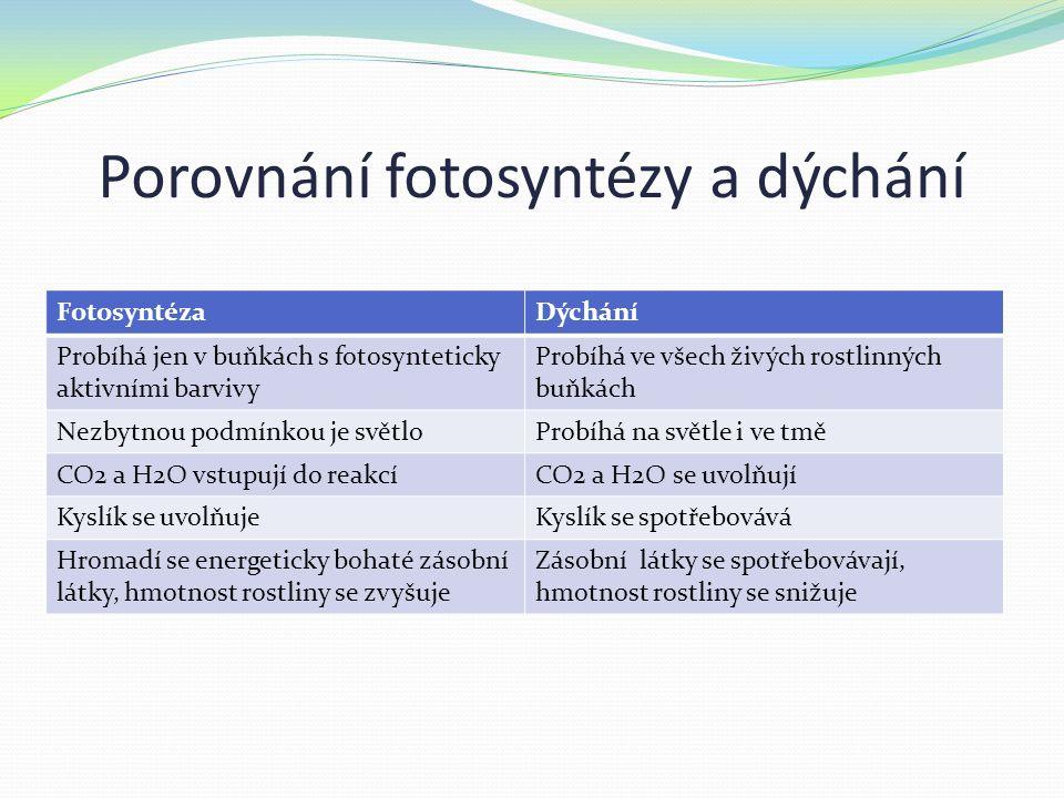 Porovnání fotosyntézy a dýchání FotosyntézaDýchání Probíhá jen v buňkách s fotosynteticky aktivními barvivy Probíhá ve všech živých rostlinných buňkách Nezbytnou podmínkou je světloProbíhá na světle i ve tmě CO2 a H2O vstupují do reakcíCO2 a H2O se uvolňují Kyslík se uvolňujeKyslík se spotřebovává Hromadí se energeticky bohaté zásobní látky, hmotnost rostliny se zvyšuje Zásobní látky se spotřebovávají, hmotnost rostliny se snižuje
