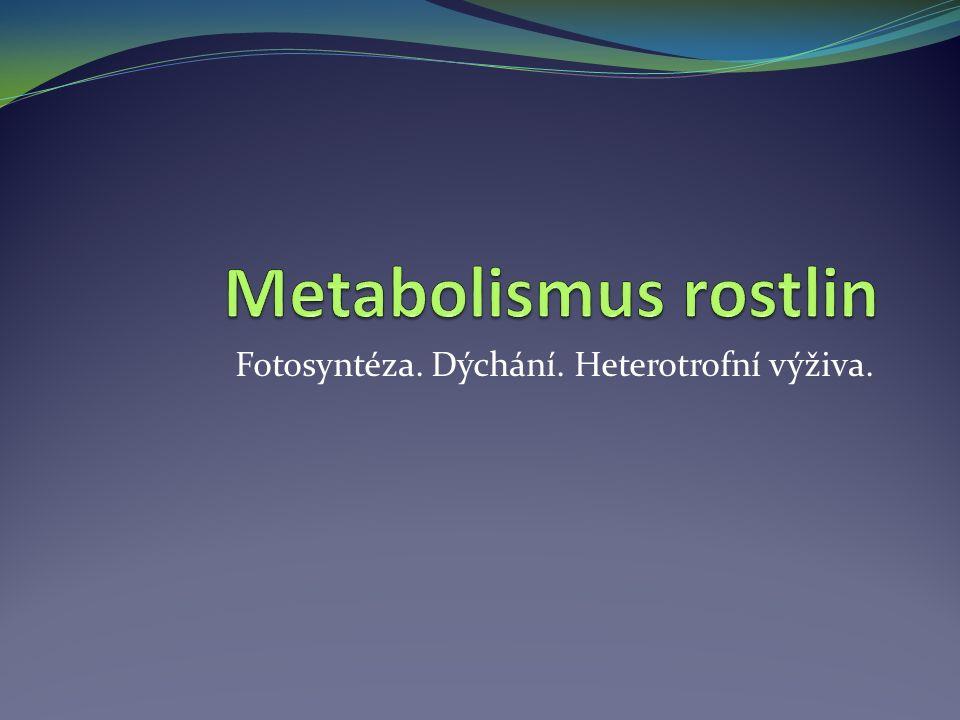 Metabolismus většina rostlin je autotrofních, tedy schopných přeměňovat anorganické látky na látka organické významné místo v metabolismu rostlin mají fotosyntéza a dýchání