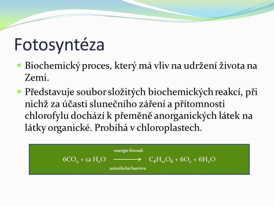 Fotosyntéza Biochemický proces, který má vliv na udržení života na Zemi.