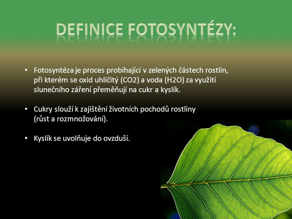 Fotosyntéza je proces probíhající v zelených částech rostlin, při kterém se oxid uhličitý (CO2) a voda (H2O) za využití slunečního záření přeměňují na cukr a kyslík.