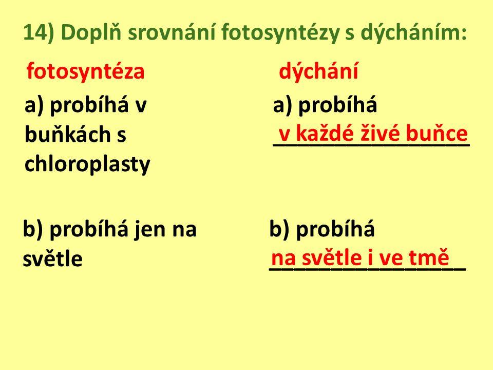 14) Doplň srovnání fotosyntézy s dýcháním: fotosyntézadýchání a) probíhá v buňkách s chloroplasty a) probíhá ________________ b) probíhá jen na světle b) probíhá ________________ v každé živé buňce na světle i ve tmě