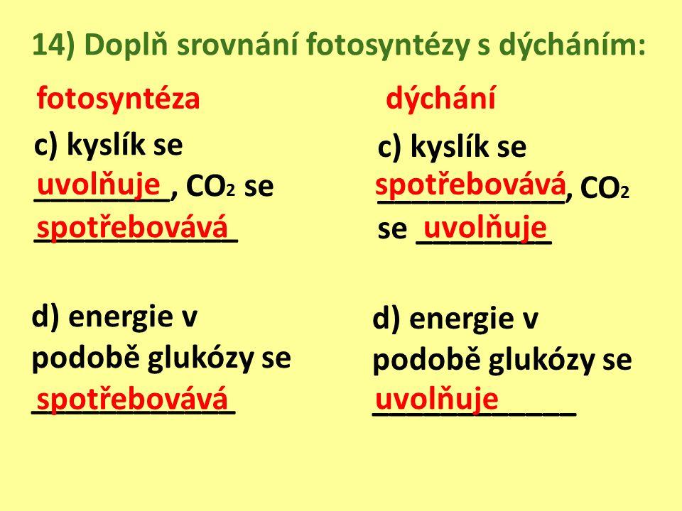 14) Doplň srovnání fotosyntézy s dýcháním: fotosyntézadýchání c) kyslík se ________, CO 2 se ____________ d) energie v podobě glukózy se ____________ c) kyslík se ___________, CO 2 se ________ d) energie v podobě glukózy se ____________ uvolňuje spotřebovává uvolňuje spotřebovává uvolňuje