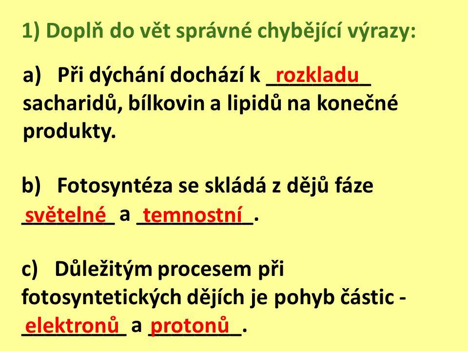 a) Při dýchání dochází k _________ sacharidů, bílkovin a lipidů na konečné produkty.